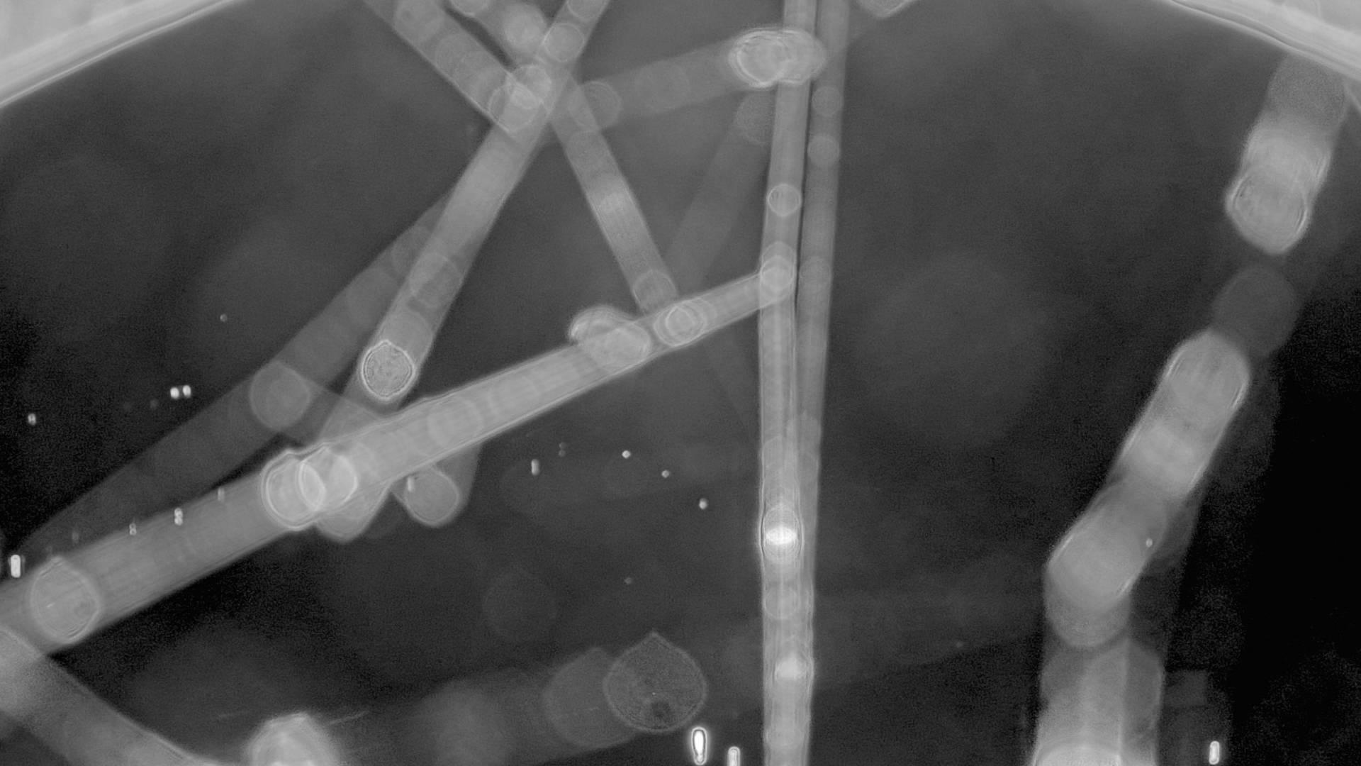 Bilde fra Bolstad